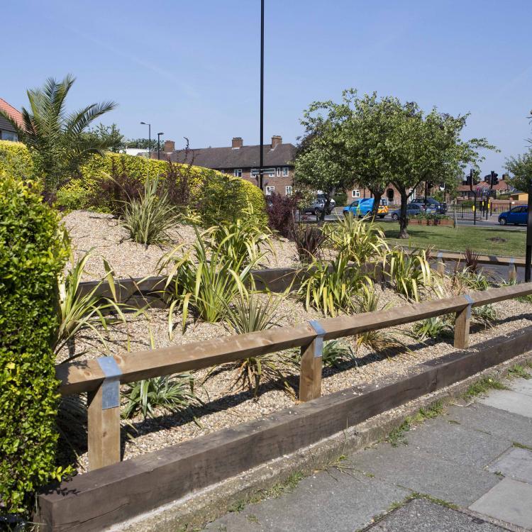 Photo of green space within the Phoenix Community Housing area