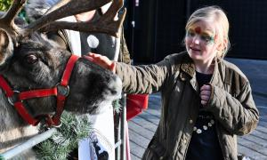 Photo of a child with a reindeer at Phoenix Community Housing's Christmas Community Links